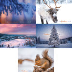 Weihnachtskarten Consumer 2020